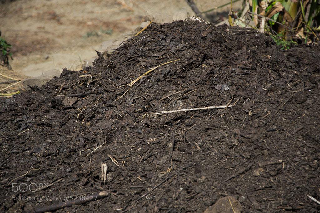Photograph Organic Fertilizer by Raj Kumar Banjara on 500px