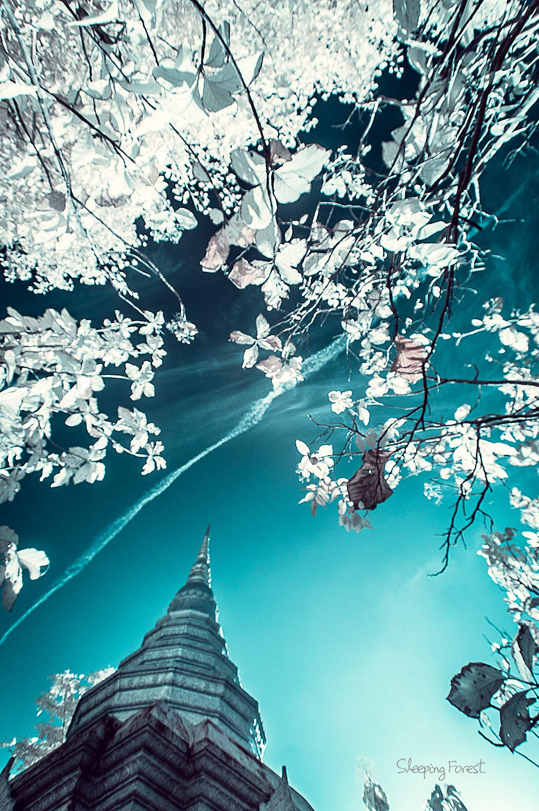 Photograph Photo camera with infrared. by Aronnsak Teelanuth on 500px