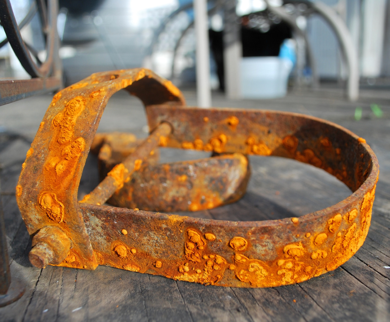 Photograph Rusty Orange by Cooksterz ^©^ on 500px