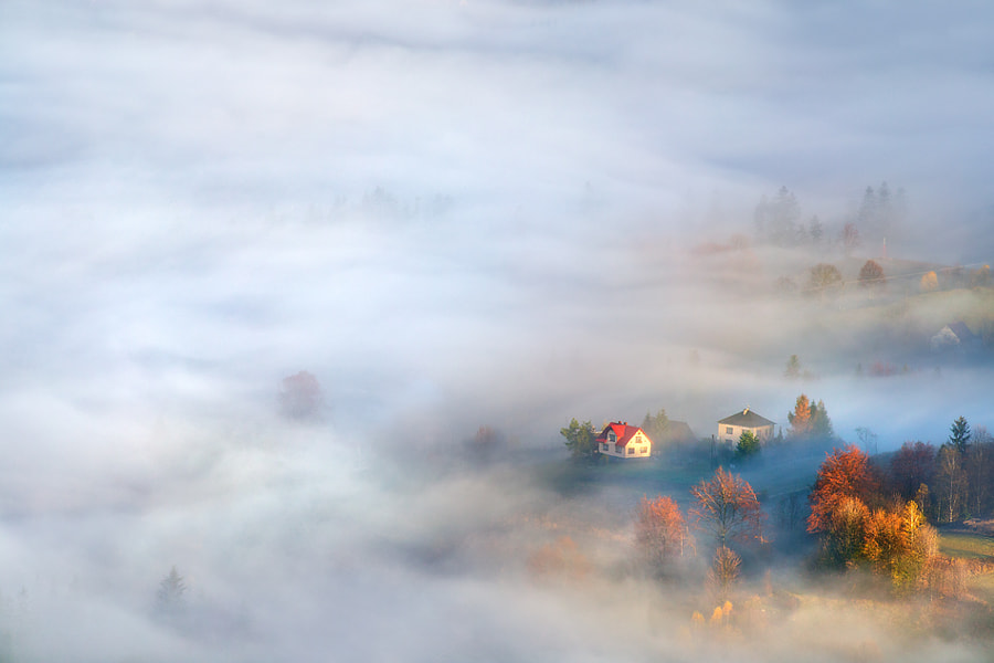 Between the fog by Marcin Sobas on 500px.com