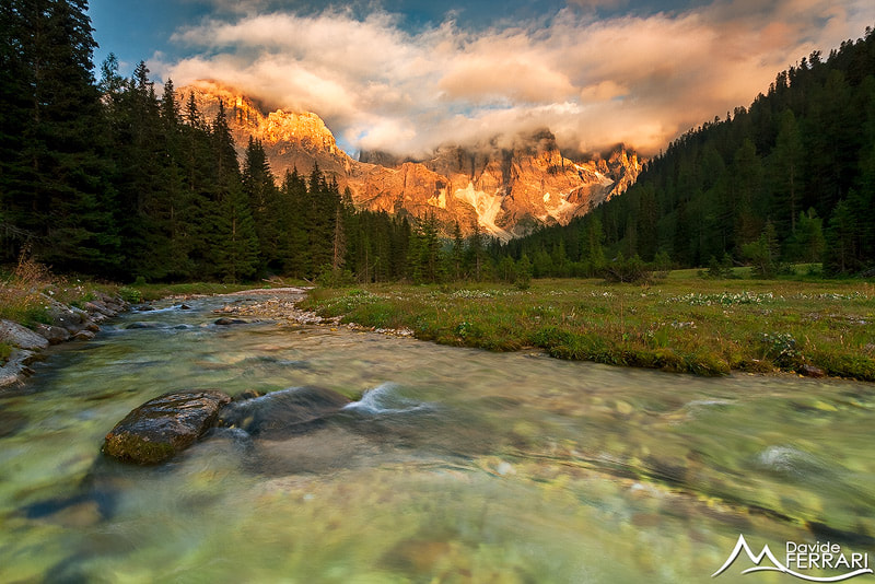 Photograph Isolation by Davide Ferrari on 500px