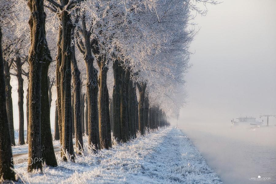 Photograph Trees & Boat by Lars van de Goor on 500px