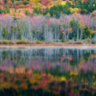 Reflections - Acadia National Park