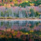 Reflections - Acadia National Park
