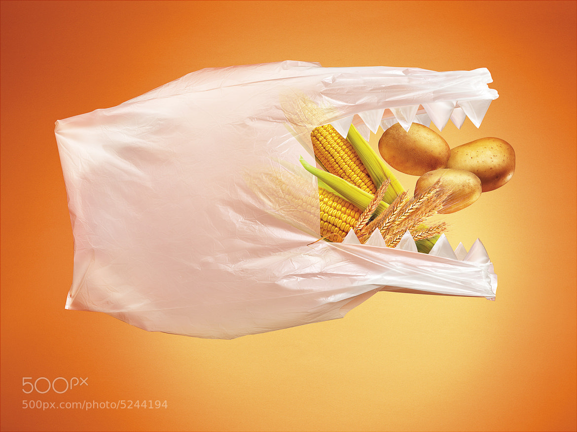 Photograph Hungry Bag by Studio  Blu 2.0 on 500px