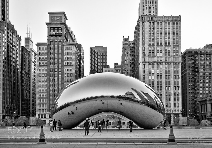 Photograph Bean by Aaron English on 500px