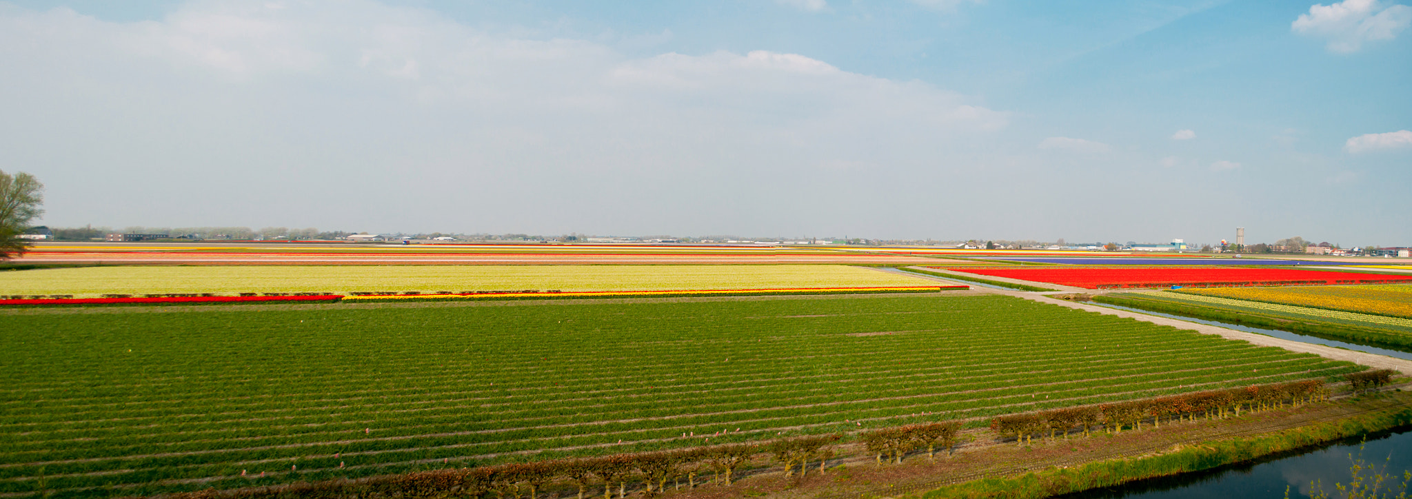 Photograph Multicolor Holland's fields by Glafira Kushnir on 500px
