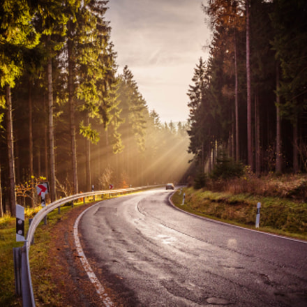 Thuringian Forrest road