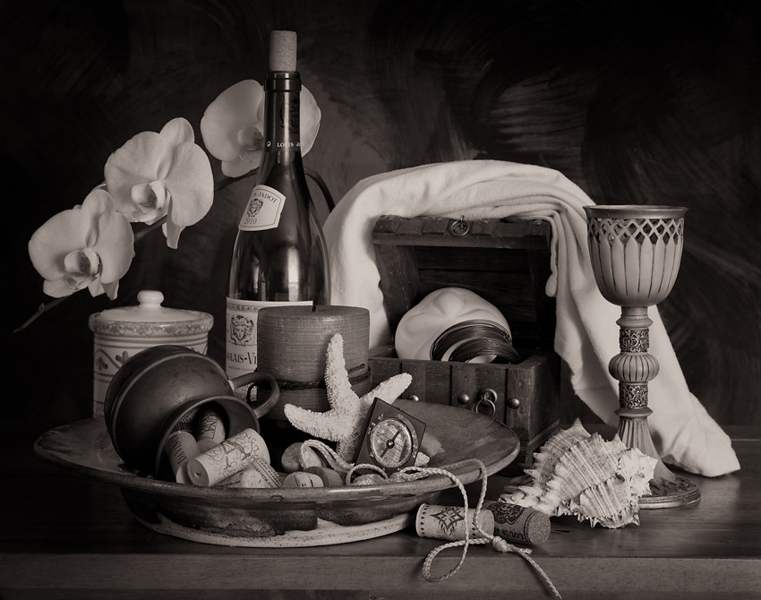 Photograph Orchid Still-life by Jim Cole on 500px