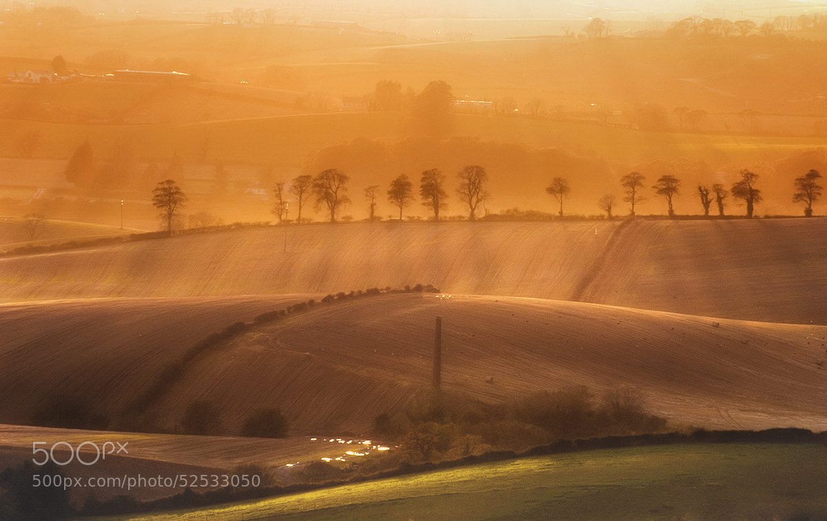 Photograph Irish fields by Lukasz Maksymiuk on 500px