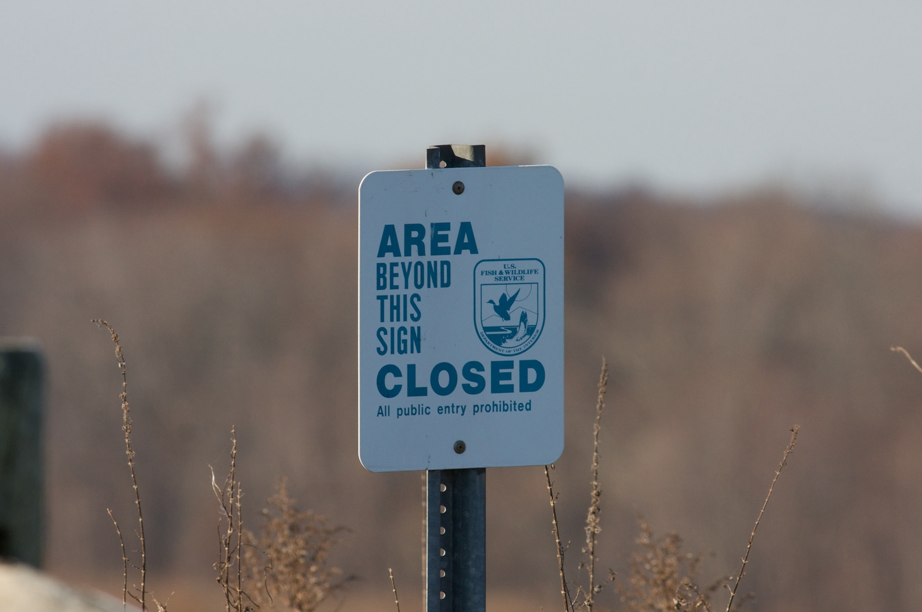 Photograph AREA CLOSED by Kevin Murphy on 500px