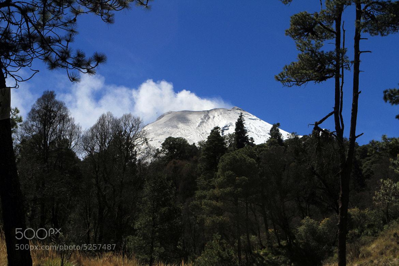 Photograph Bosque y Volcan by Cristobal Garciaferro Rubio on 500px