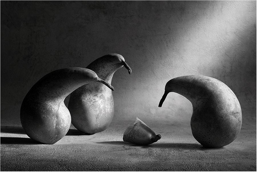 Farewell, dear friend! by Victoria Ivanova on 500px.com