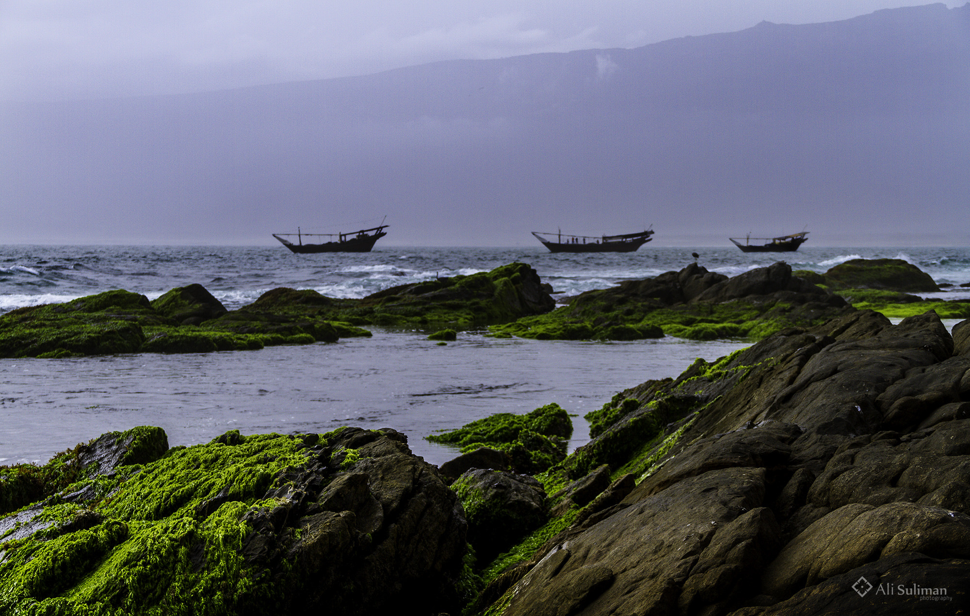 Photograph Salalah by Ali Suliman on 500px