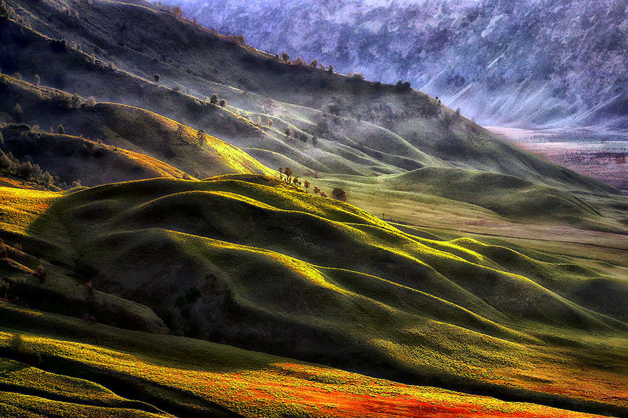 Photograph Tengger Valley by Fabianus Hendrawan on 500px