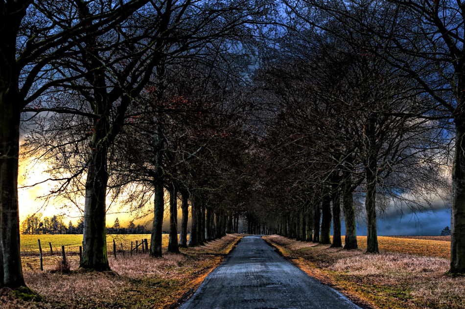 Photograph the shadow of the winter by piet flour on 500px