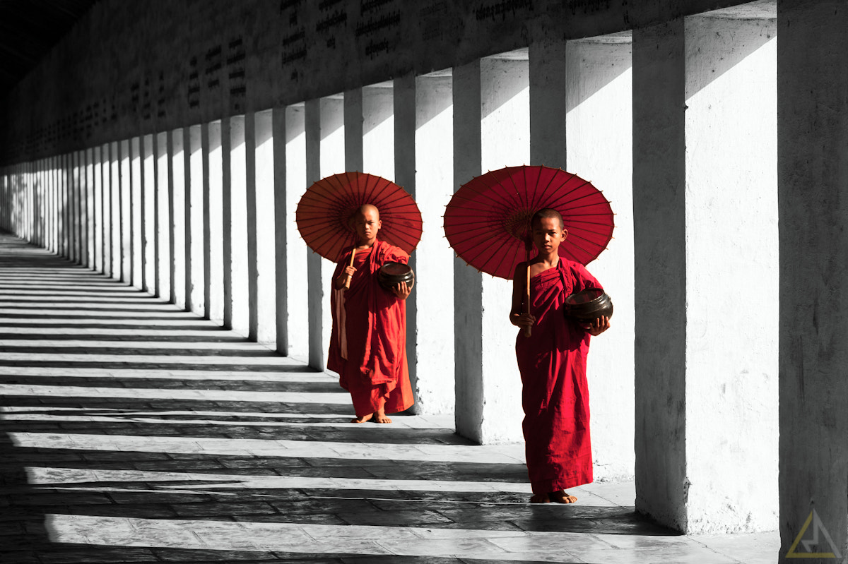 Photograph Novices by La Mo on 500px