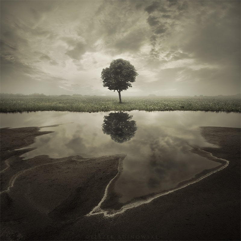 Photograph Reflection by Leszek Bujnowski on 500px