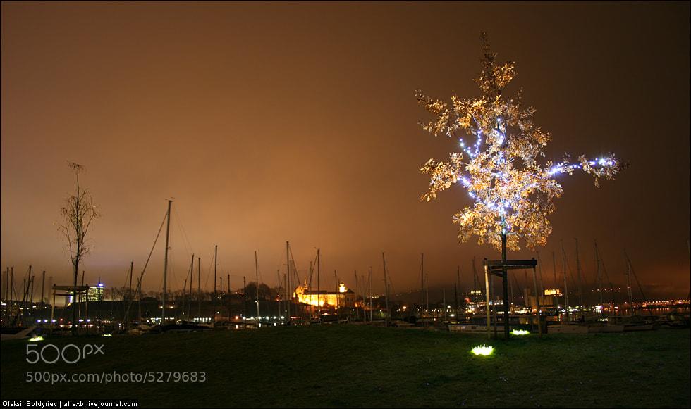 Photograph Oslo Night Port by Oleksii Boldyriev on 500px