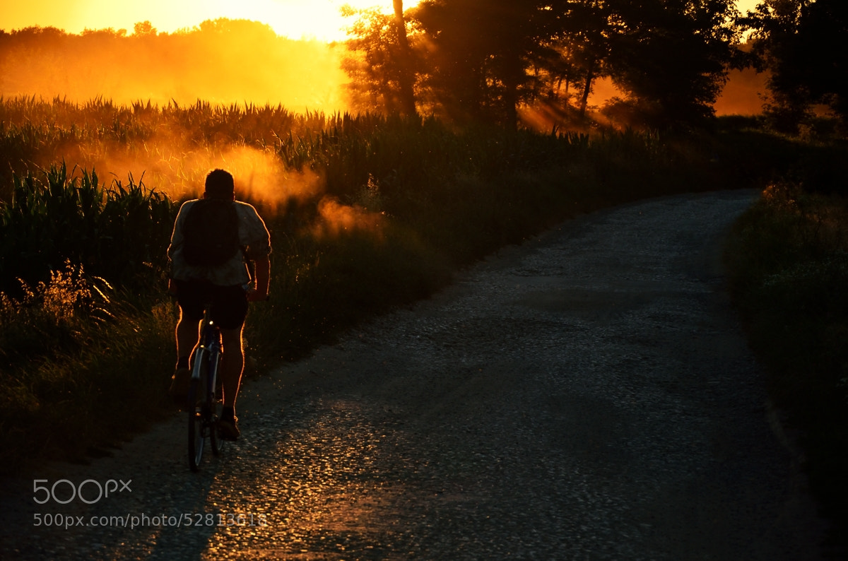 Photograph Summer evening by Peter Kováč on 500px
