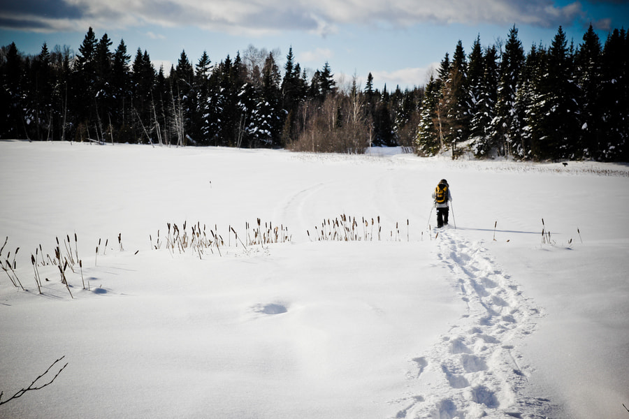 Photograph Snowshoeing by André Bernier on 500px