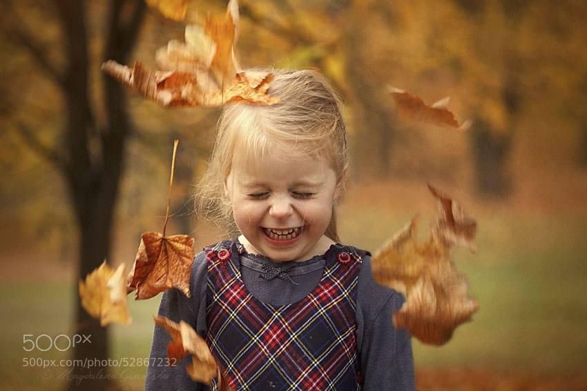Photograph Leaf shower (Farwell golden Autumn) by Magdalena Ginalska on 500px