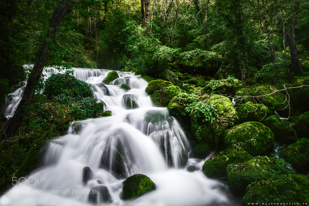 Photograph Torrent of life by Bastien HAJDUK on 500px