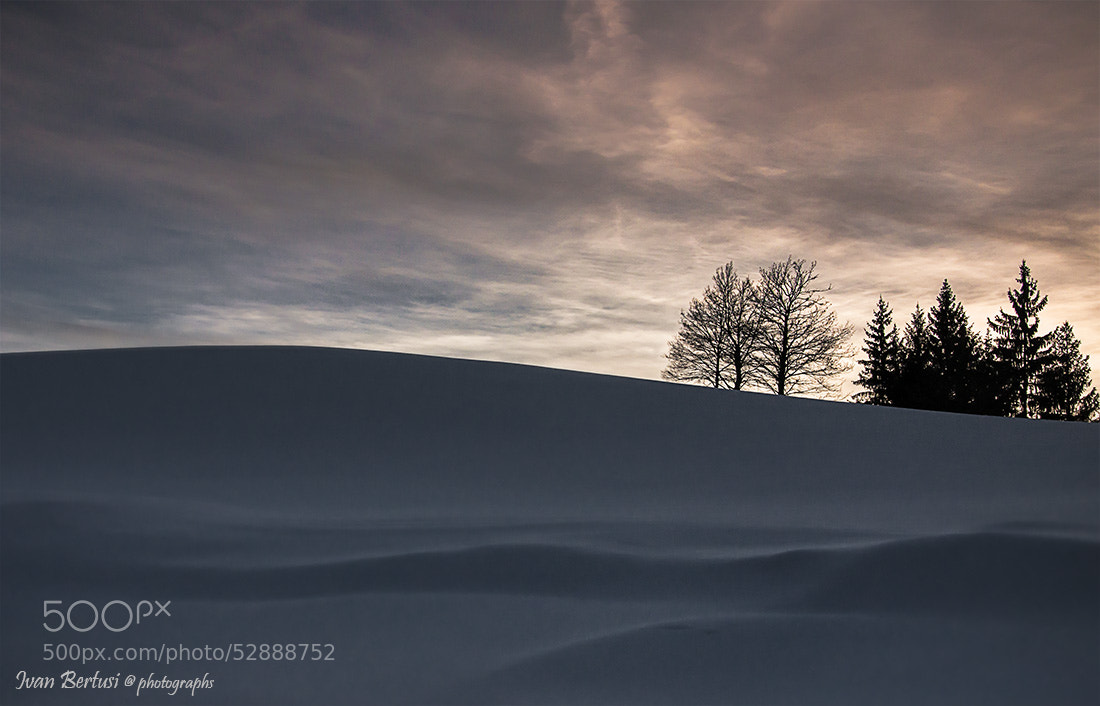 Photograph Sound of silence by Ivan Bertusi on 500px