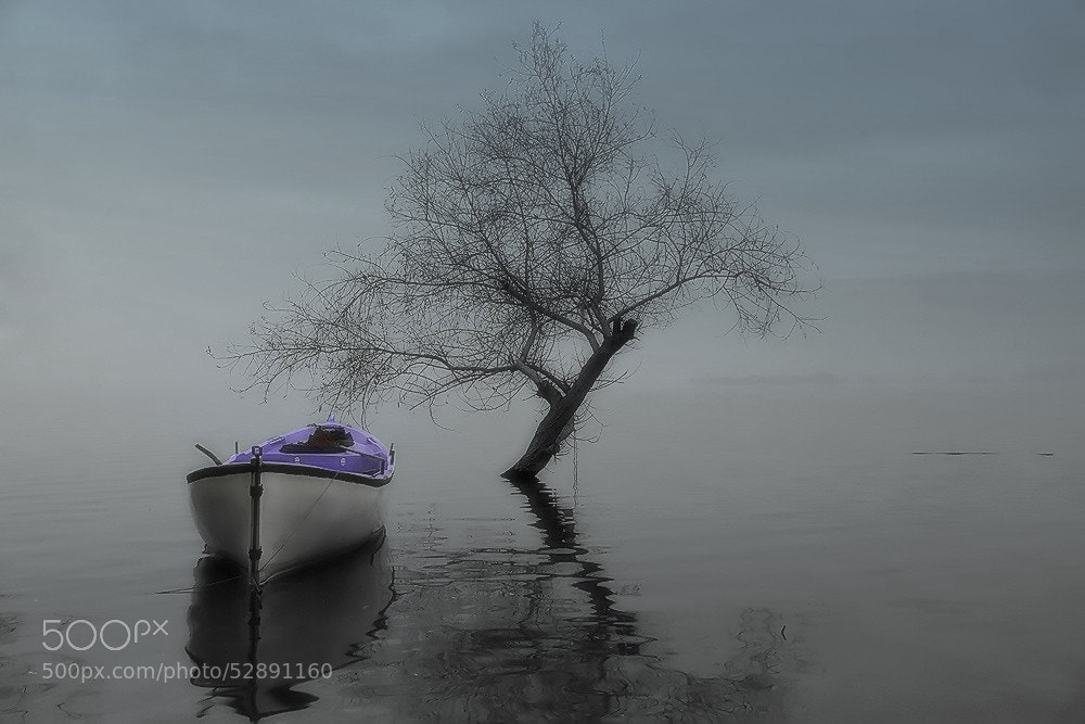 """Photograph """"serenity""""(fog&lake) by e&e photography on 500px"""