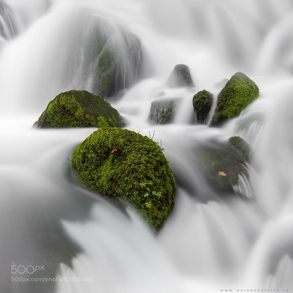 Photograph Submerged by Bastien HAJDUK on 500px