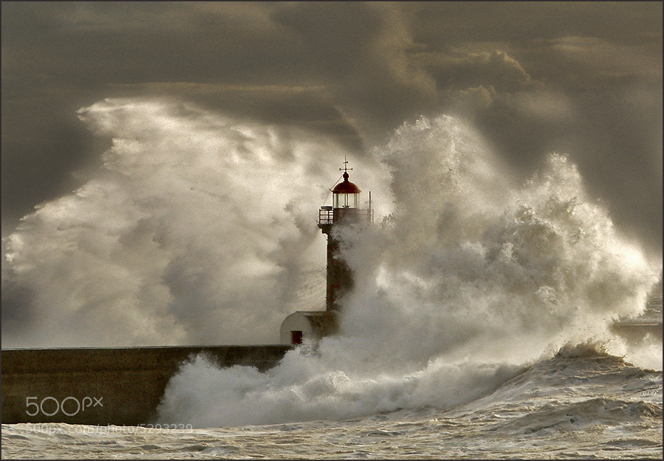 Photograph The Storm by António Marciano on 500px