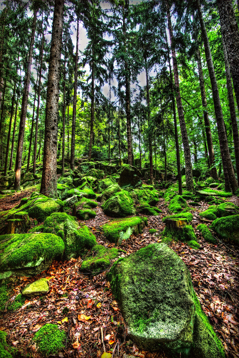 Photograph Bavarian Stones by Al Bert Pinkl on 500px