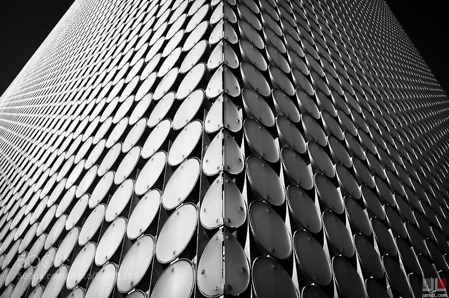 Bilateral by Jared Lim on 500px.com