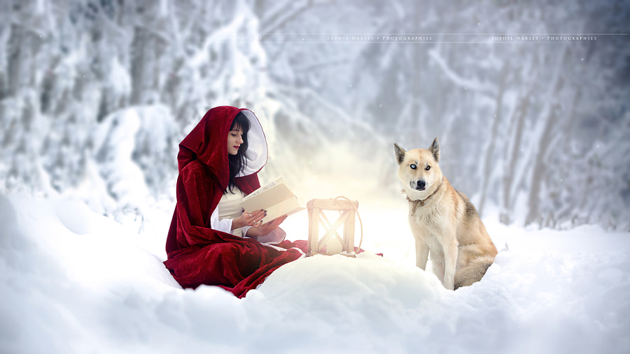Tell me about Fairy Tale by Sophie Narses on 500px.com