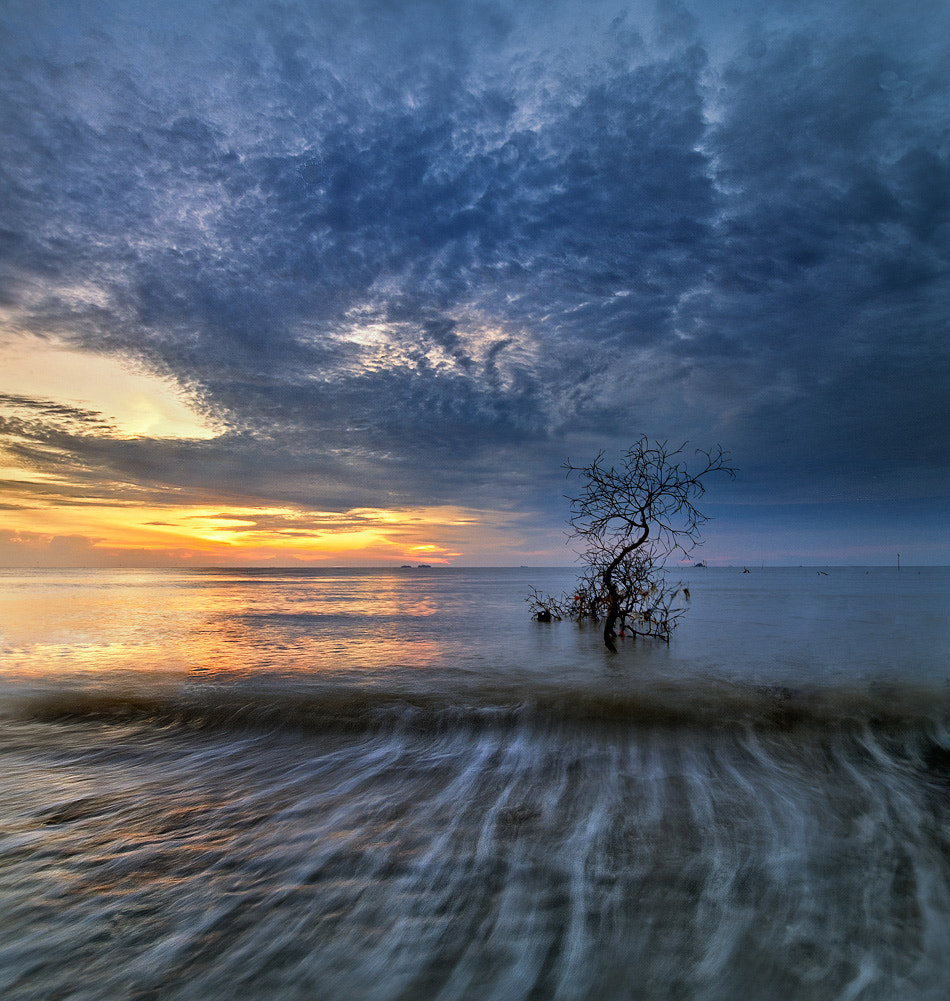 Photograph Pantai Remis Malaysia by lim theam hoe on 500px