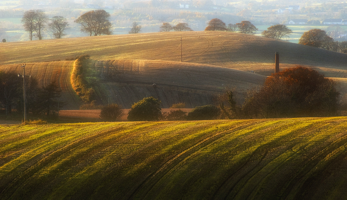 Photograph Waves of Down by Lukasz Maksymiuk on 500px