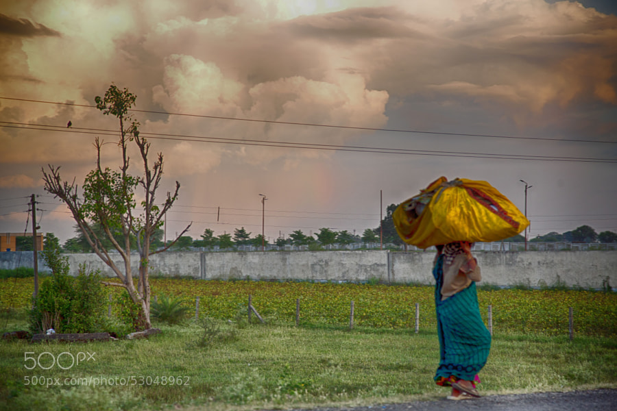 Digital color HDR image of a woman carrying a large sack on her head walking past a field on a cloudy evening in Indore, India