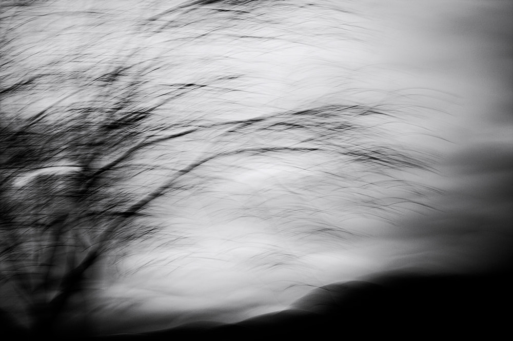 Photograph November by Lucia Brancati on 500px