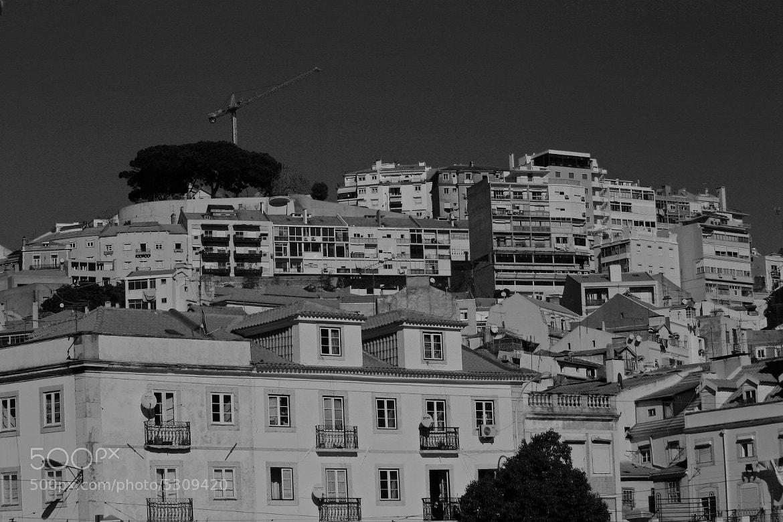 Photograph Lisbon Black&White by Abm Oliveira on 500px