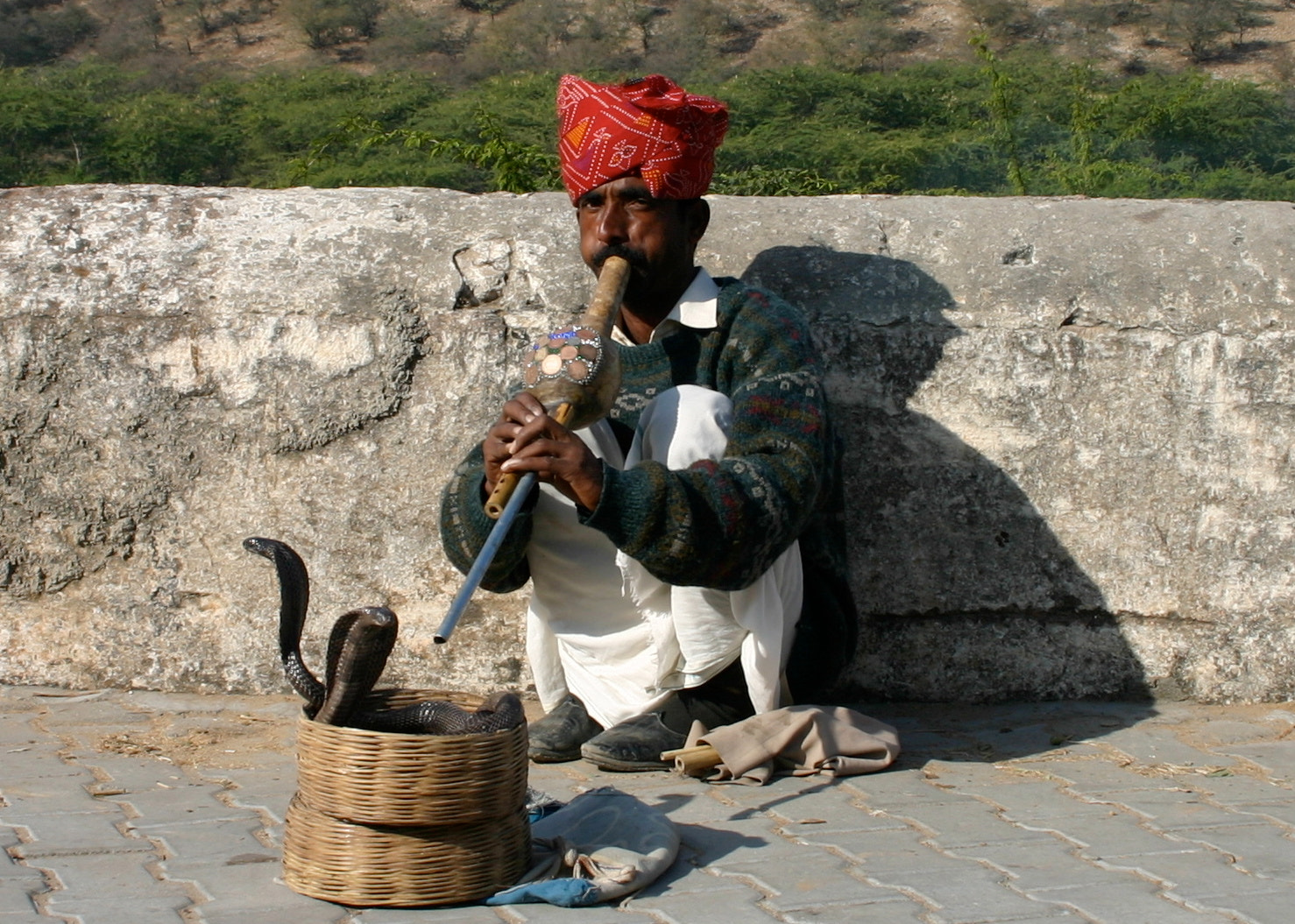 Photograph Snake charmer by Andres Aboumrad on 500px