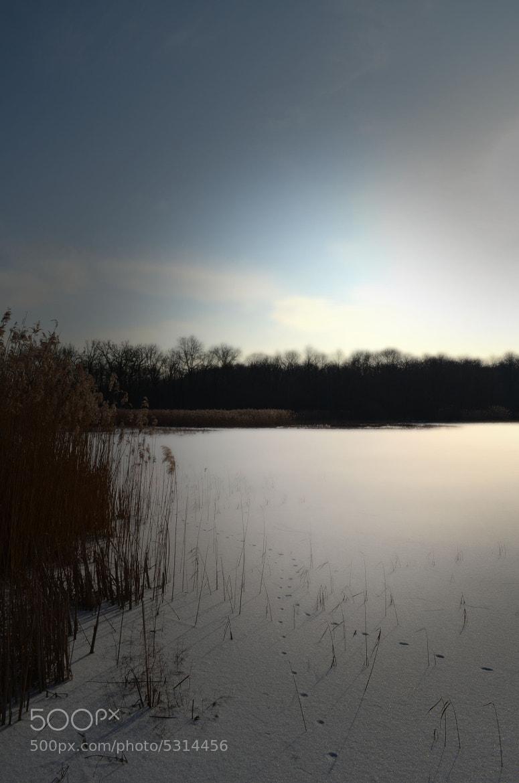 Photograph winter by joan koch on 500px
