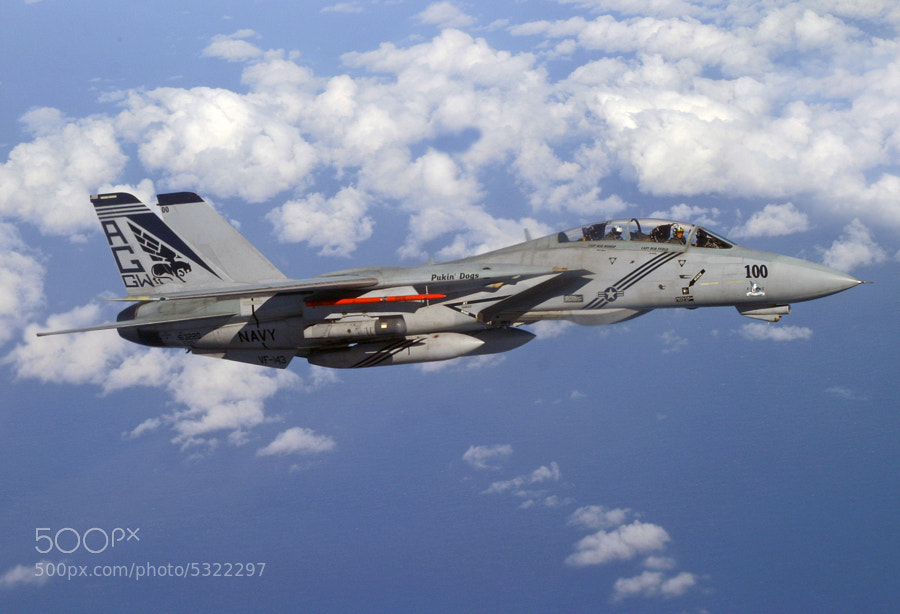 F-14B assigned to US NAVY Squadron VF-143, the World Famous Pukin' Dawgs.  The unusual moniker was derived from the winged black lion, the mythical Griffin applied to  the vertical stabilizer of the squadron's aircraft.