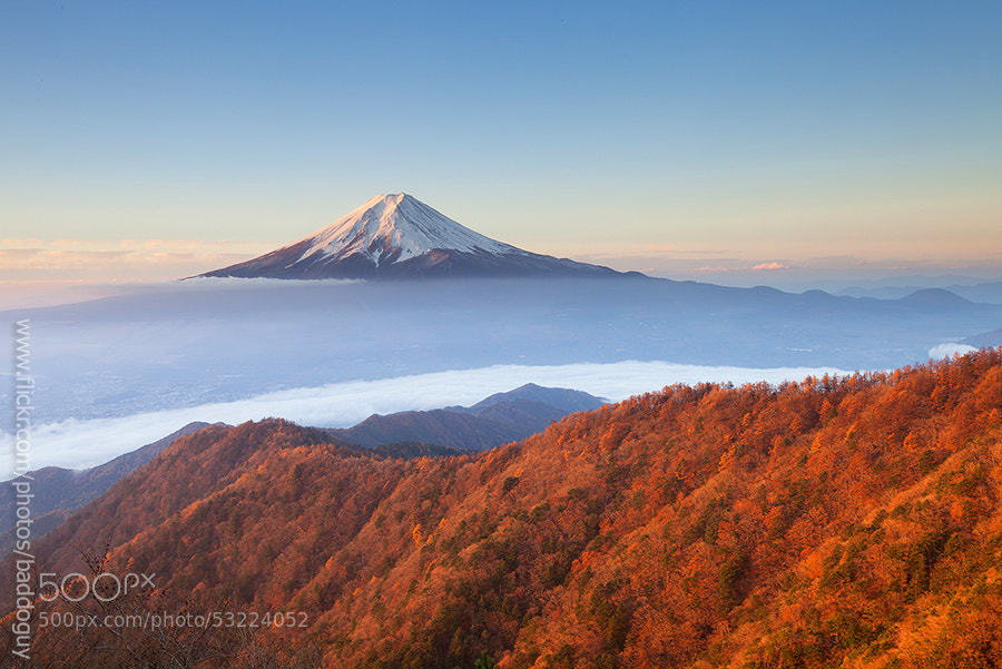 Photograph Mt Fuji in Autumn by Jacky CW on 500px