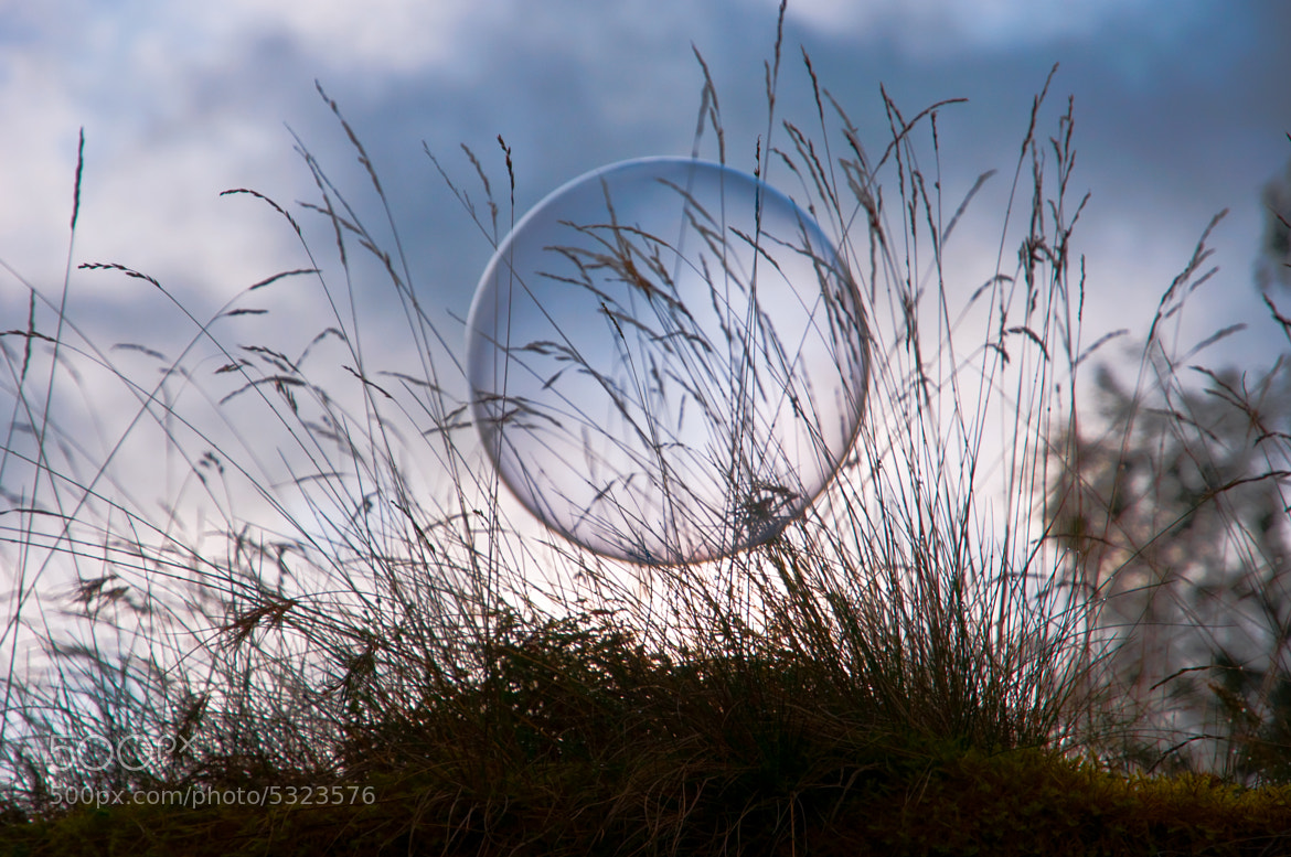Photograph Soap bubble by Odin Hole Standal on 500px