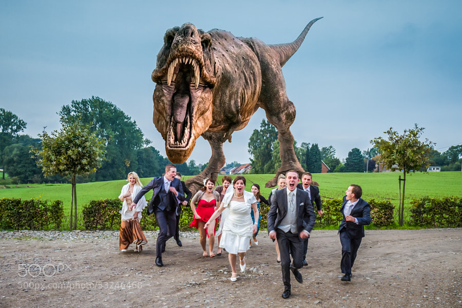 Photograph Rex at the Wedding by Steeve Vanengeland on 500px