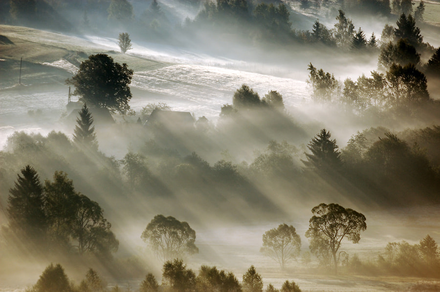 Photograph In valley by Marcin Sobas on 500px