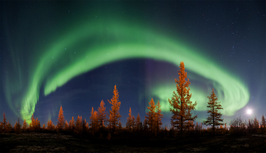 Northern lights by Andrey Snegirev on 500px.com