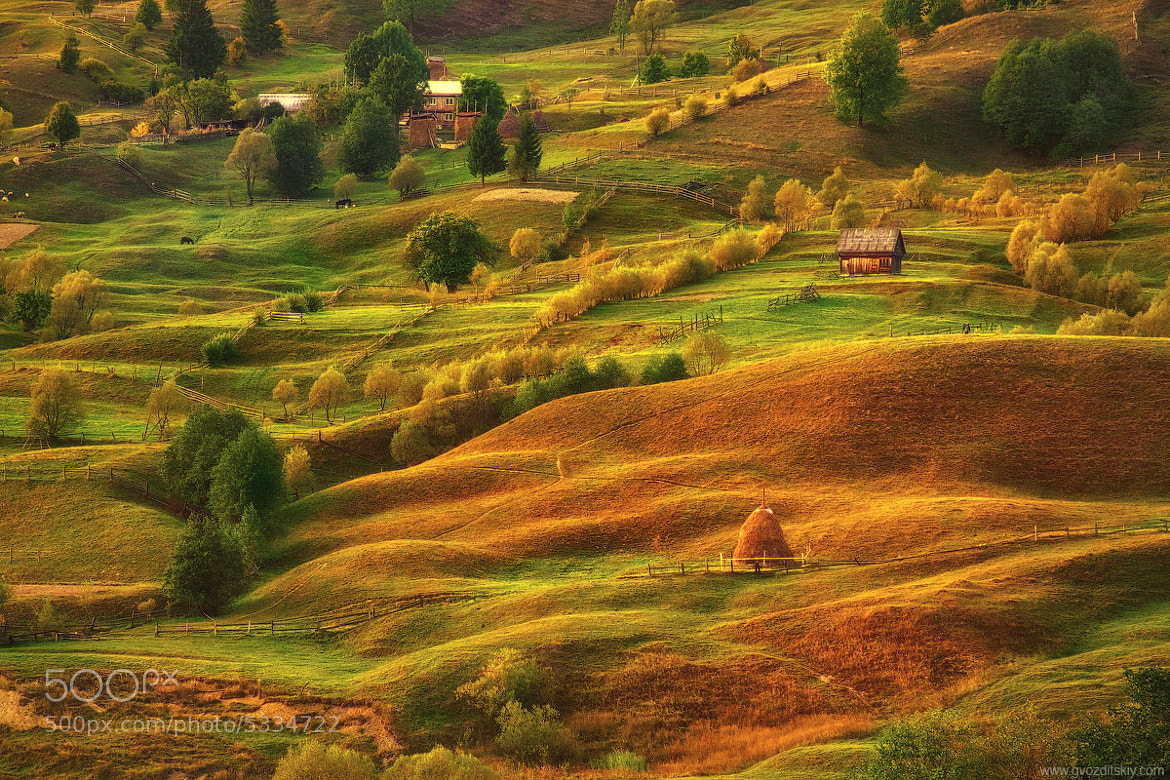 Photograph Carpathian hills by Alexey Gvozditskiy on 500px