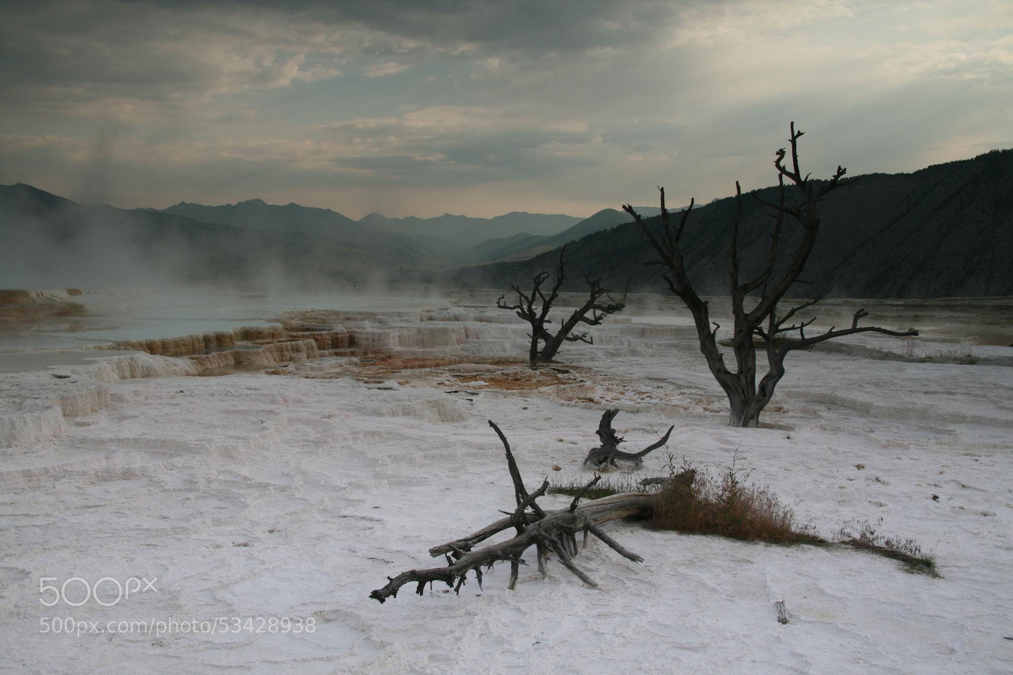 Photograph Yellowstone by stefano taffoni on 500px