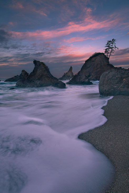 Photograph Wild Dawn by Trevor Anderson on 500px